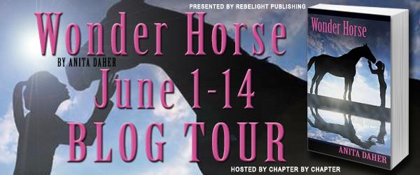 Wonder-Horse-Banner
